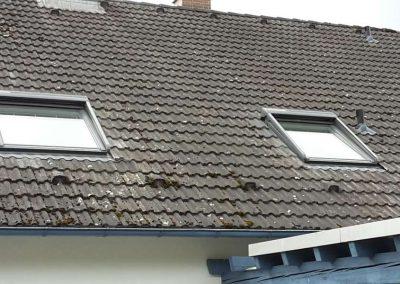 Dachfenster-9 (Bild3)